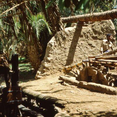 Wasserpumpe mit Holzzahnrad – Ägypten, Assuan – Mai 1984
