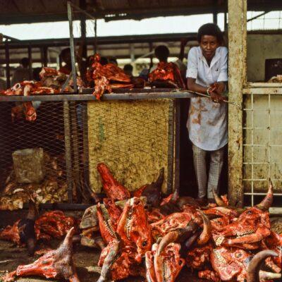 Unschöner Fleischgeruch – Sudan, Omdurman – Mai 1984