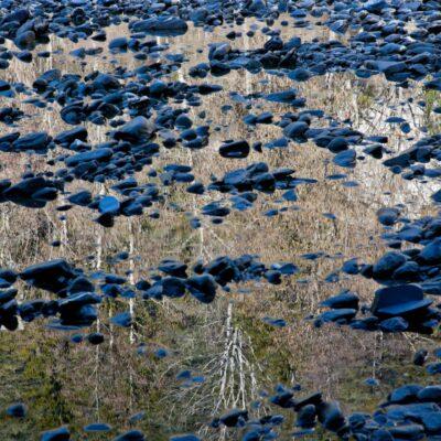 Blaue Steine im Birkenspiegel – Ruin Aulta, Vorder-Rhein – 19. Februar 2011