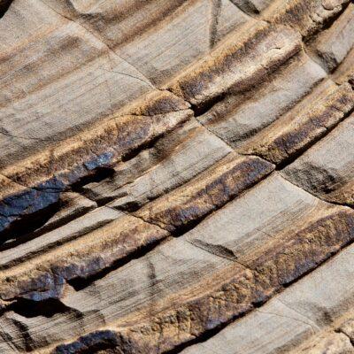 So was wie Jahresringe im Stein – Fuorcla Tschitta – 19. Juli 2008