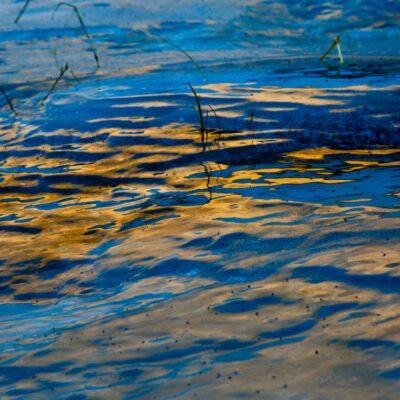 Reflexionen auf vereister Graslandschaft – Val Languard – 27. Dezember 2015