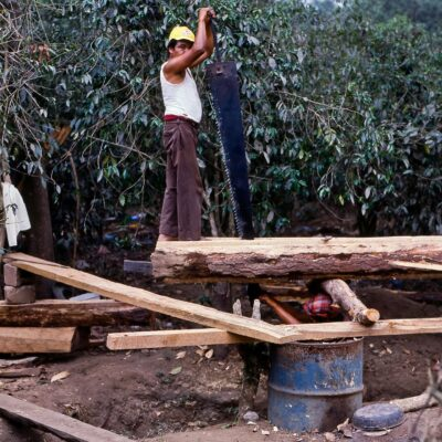 Bretter werden von Hand aus dem Baum gesägt – Guatemala, Santa Maria de Jesus – Mai 1985
