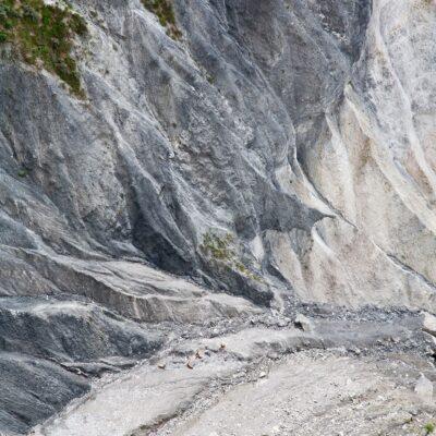 Gämsen im Steinschlaggebiet – Ruin Aulta – 25. Mai 2007
