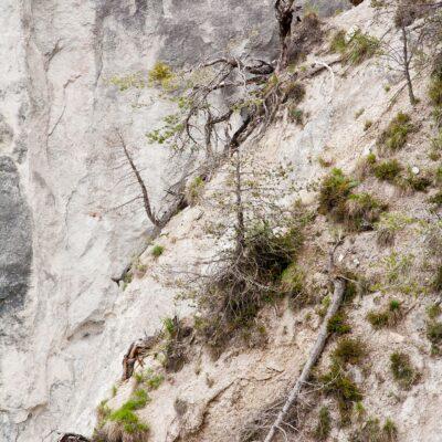Potentiell gefährdet – Ruin Aulta – 25. Mai 2007